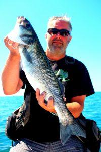 Perrodo guide de pêche golfe du morbihan - pêche au bar