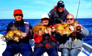 Perrodo guide de pêche, golfe du morbihan, pêche morbihan