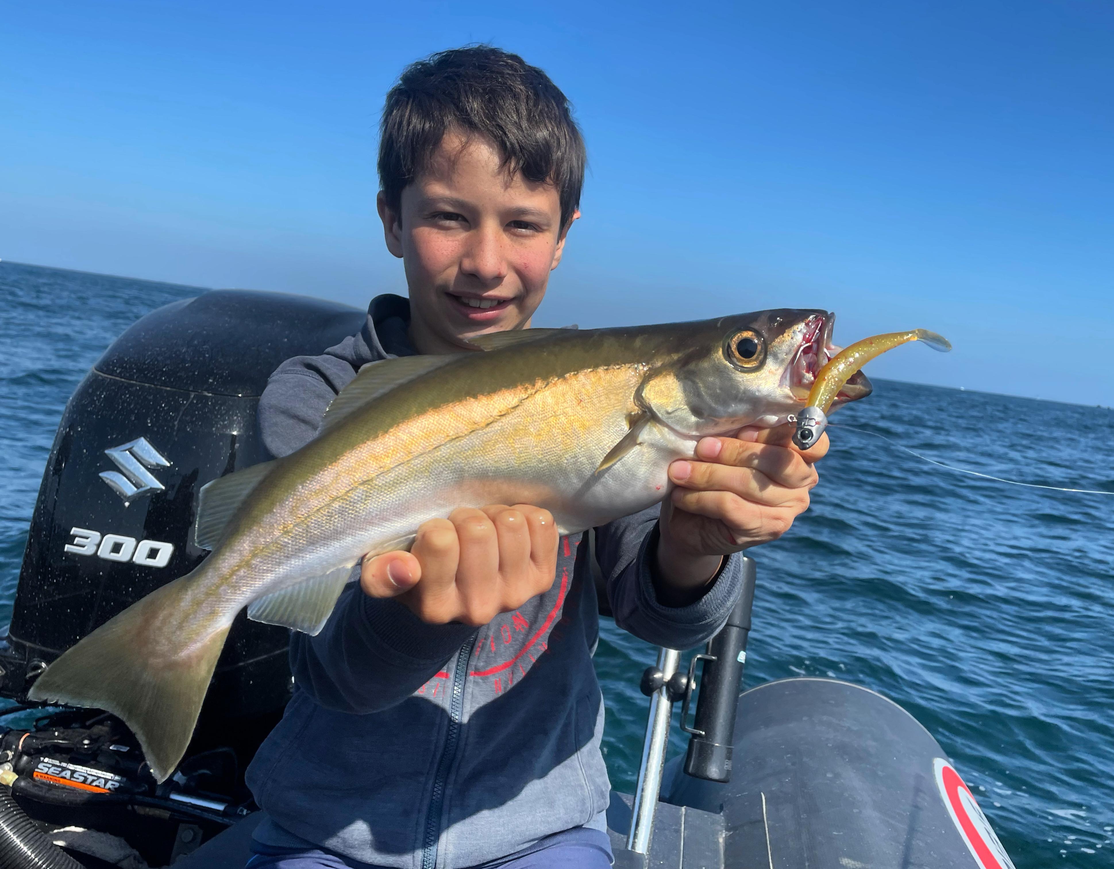 Pierre-Yves Perrodo guide de pêche - Golfe du Morbihan - guidagepechemorbihan