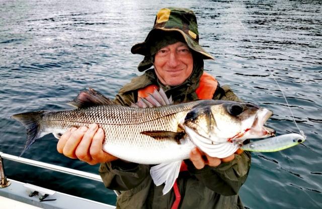 Pierre Yves Perrodo guide de pêche Golfe du morbihan, guide golfe du morbihan, guide peche morbihan, guidagepechemorbihan, pêche aux leurres, pêche à l'appât, ultimatefishing, seabass, topwater