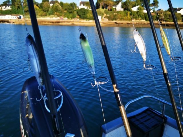 Pierre Yves Perrodo guide de pêche Golfe du morbihan, guide golfe du morbihan, guide peche morbihan, guidagepechemorbihan, pêche aux leurres, pêche à l'appât, ultimatefishing, Z claw, Asturie, Top water, stickbait