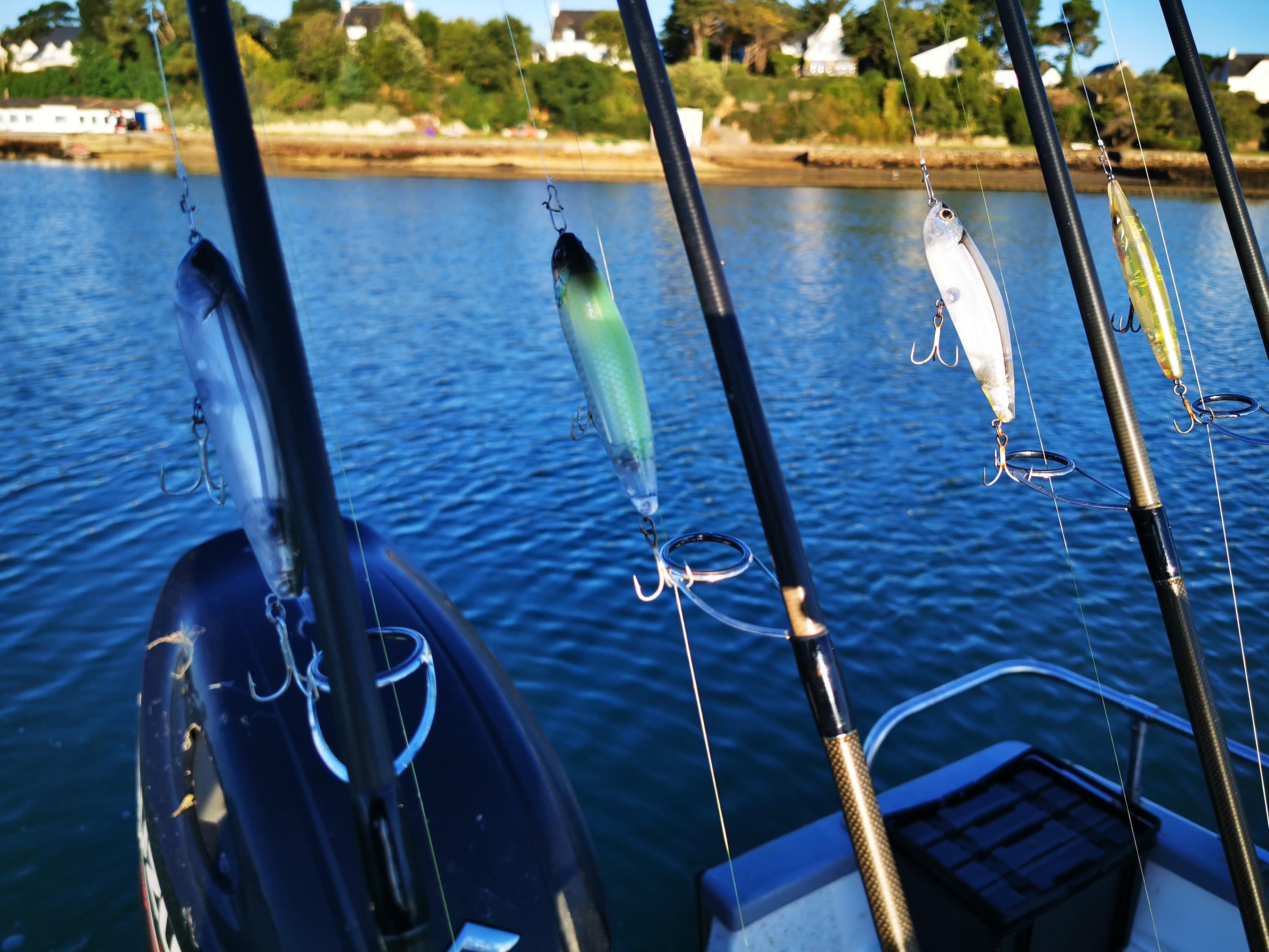 Pierre-Yves Perrodo guide de pêche golfe du morbihan, pêche au bar et dorade