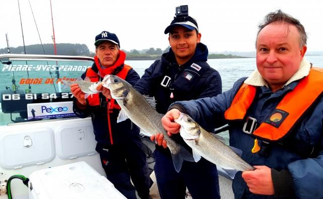 Bars du Golfe du Morbihan - Pierre-Yves Perrodo guide de pêche Golfe du Morbihan